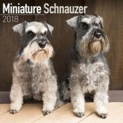 Miniature Schnauzer Calendar 2018