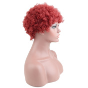 Razeal Synthetic Afro Curly Hair Wigs for Black Woman Short Kinky Hair Wine Red Heat Resistance Fibre 5.1cm 90g