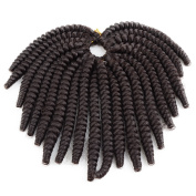 6 PACKS Recommended Razeal 16 Strands/Pack Toni Curl Crochet Braids Collection Ready for Installation, Each Box Contains Curled Spirals Made of 100% High Temperature Fibre Hair With Free Crochet Hooks