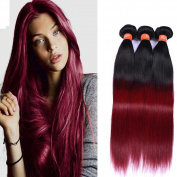 Fashion Lady Hair Ombre Straight Hair 1b/99j Bazilian Virgin Remy Hair Bundles Ombre Red Colour 1b Burgundy Hair Weaves Extensions