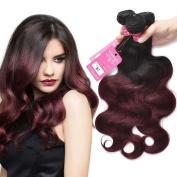 Stephanie Hair Burgundy Brazilian Body Wave Bundles 7A Ombre Human Hair Weave Bundles Hair Extensions Two Tone Hair Colour 1b/99J (100+/-5g)/pc