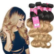 Stephanie Hair Ombre Brazilian Body Wave Bundles 7A Hair Weave Bundles Two Tone Human Hair Extensions Colour 1b/27 (100+/-5g)/pc