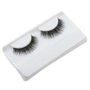 Hunzed Natural Eye Splashes Beauty Dense A Pair False Eyelashes