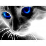 Ukerdo DIY Blue Eyes Perspective Cat Diamond Painting Wall Pictures for Bedroom