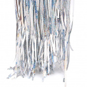 Peachshop 1m x 2m Foil Fringe Curtain for Wedding Room Background Wall Party Supplies