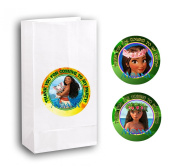 12 MOANA Birthday Party Favour Bags With Stickers #2