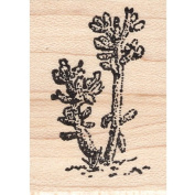 Tall Cactus Rubber Stamp