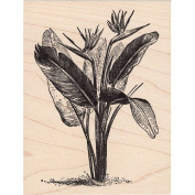Bird of Paradise Rubber Stamp