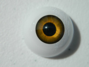 26mm Pair of Realistic Life Size Acrylic Half Round Hollow Back Eyes for Halloween PROPS, MASKS, DOLLS or Bears FE01