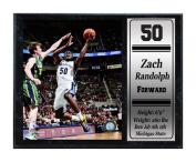 Encore Select 522-39 NBA Memphis Grizzlies Zach Randolph Stat Plaque with Photo, 30cm by 38cm