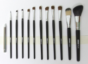 Kit 12 make up Brushes