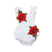 Oyedens Newborn Baby Girls Sweet Rose Flower Bodysuit Romper Sunsuit Outfits