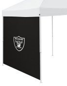 NFL Oakland Raiders Side Panel, One Size, Charcoal