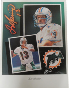 Dan Marino 18x24 Unsigned Lithograph Poster Print Miami Dolphins New