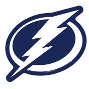 NHL Tampa Bay Lightning Logo on the GoGo