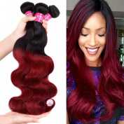 Wome Hair 7A 100% Unprocessed Peruvian Virgin Human Hair Bundles Ombre Body Wave Hair Extensions 4 Bundles 100g(+/-5g)/pcs Black to Red Colour 1B/Burgundy