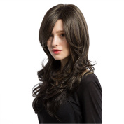 Panda Hair 60cm Dark Brown Ombre Long Curly Wig - Popular Synthetic Long Wavy Wig for Women with Free Wig Cap