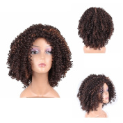 HAIR WAY Short Kinky Curly Wigs Heat Resistant Fibre Hair for Black Women Full Machine Made None Lace Glueless Synthetic Hair Wigs for Daily Wear #F4/30