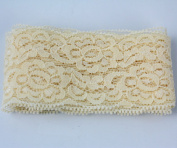 """2"""" 50mm Stretch Lace Embroidery Lace Fabric Decorative Lace Trims 10 Yards"""