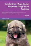 Sarplaninac (Yugoslavian Shepherd Dog) Tricks Training Sarplaninac (Yugoslavian Shepherd Dog) Tricks & Games Training Tracker & Workbook. Includes  : Sarplaninac Multi-Level Tricks, Games & Agility. Part 3