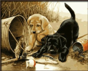 DIY Oil Painting for Adults Kids Paint By Number Kit Digital Oil Painting Two dogs Play Fun 41cm x 50cm