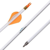 Huntingdoor 80cm Carbon Arrows Archery Target Practise with Field Points Fletched 400 Spine Shaft 5.1cm Vanes for Recurve & Compound Bow 12 Pack