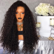 QD-Tizer Black Loose Curly Wavy Synthetic Lace Front Wig 180 Density Glueless Synthetic Wigs for Fashion Women 70cm