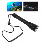 8000LM Underwater 100m 3 X T6 LED Diving Flashlight Dive Waterproof Torch With Hand Strap
