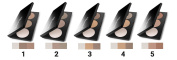 PAESE Artist Contouring Palette, No 2