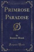 Primrose Paradise