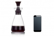 Oil & Vinegar Bottle,Heat-resistant Glass Spice Jar