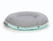 Pello Multi-use Luxe Baby-Toddler Floor Pillow/Play Mat/Lounger, Dakota/Aqua