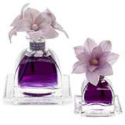 LAVENDER38; ROSEMARY Agraria Flower Diffuser Combo - AirEssence and PetiteEssence