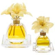 GOLDEN CASSIS Agraria Flower Diffuser Combo - AirEssence and PetiteEssence