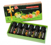 Top 6 Fruit Scent 100% Pure Essential Oil Therapeutic Grade ( 10ML ) Combo Set (Bergamot, Lemon, Lime, Orange, Grapefruit, Mandarin ) Aromatherapy