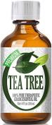 Best Tea Tree Oil - 100% Pure Tea Tree Essential Oil - 120ml