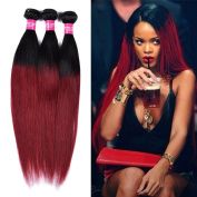 Wome hair 100% Unprocessed Peruvian Virgin Human Hair Ombre Burgundy Two Tone Mixed Length 12 14 41cm Straight Human Hair Weave 3 bundles