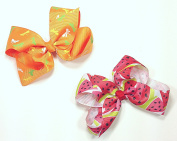 Orange Dragonfly & Watermelon Set of Two 13cm Hair Clip Barrette Bows for Girls