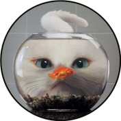 Cat Looking at Gold Fish in Bowl - Etched Vinyl Stained Glass Film, Static Cling Window Decal