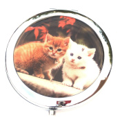 Ginger and White Cute Kittens Compact Mirror
