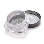 Sexy Mix Holographic Nail Powder Rainbow Chrome Nail Pigment for Manicure Laser Nail Art Glitter 0.5g/box