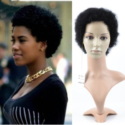 Razeal Afro Curly Wig for Black Women Short Kinky Synthetic Hair Black Human Hair Wigs Fluffy None Lace Full Wigs