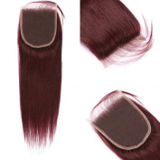 FDshine 99J Closure Brazilian 99J Straight Hair Closure with Baby Hair 10cm x 10cm Lace Closures