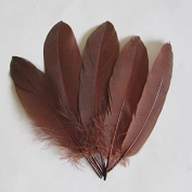 WAKEACE Goose Feathers 100 Pieces 13-18CM \5-7 Inches Decorative Clothing Design DIY