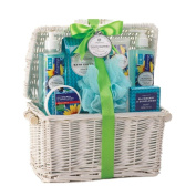 Spa Gift Basket, Best Healthy Holiday Gift Baskets Birthday Gift Baskets For Her