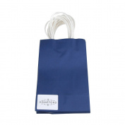 Homeford Solid Colour Paper Treat Bags, White Handle, 21cm x 13cm , 10-Piece