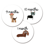 Monthly Baby Milestone Stickers for Girls or Unisex, Cute Puppy Design (12 stickers) by Harlow & Hunter