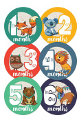 Wholesale Princess Tribal Theme Baby Monthly Stickers - Set of 12