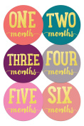 Wholesale Princess Bold Theme Baby Monthly Stickers - Set of 12
