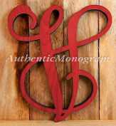Wooden SINGLE LETTER PAINTED Monogram, Vine Script, Home Decor, Anniversary Decor, Initial Monogram, Door Hanger, Guarden, Wall Hanging
